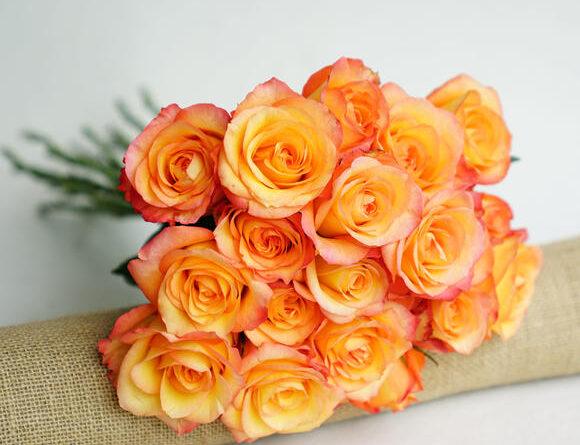 hoa tươi amy